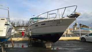 Sea Ray 300 sundancer occasion