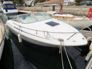 Sea Ray 215 Express Occasion