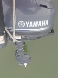Yamaha F6CMHL à vendre - Photo 2