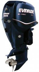 moteur occasion Evinrude injection HORS BORD ASSISTANCE