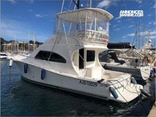 Luhrs Luhrs 41 Convertible � vendre - Photo 1