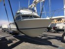 achat  Bertram Bertram 28 Flybridge PATURLE NAUTIC GROUPE