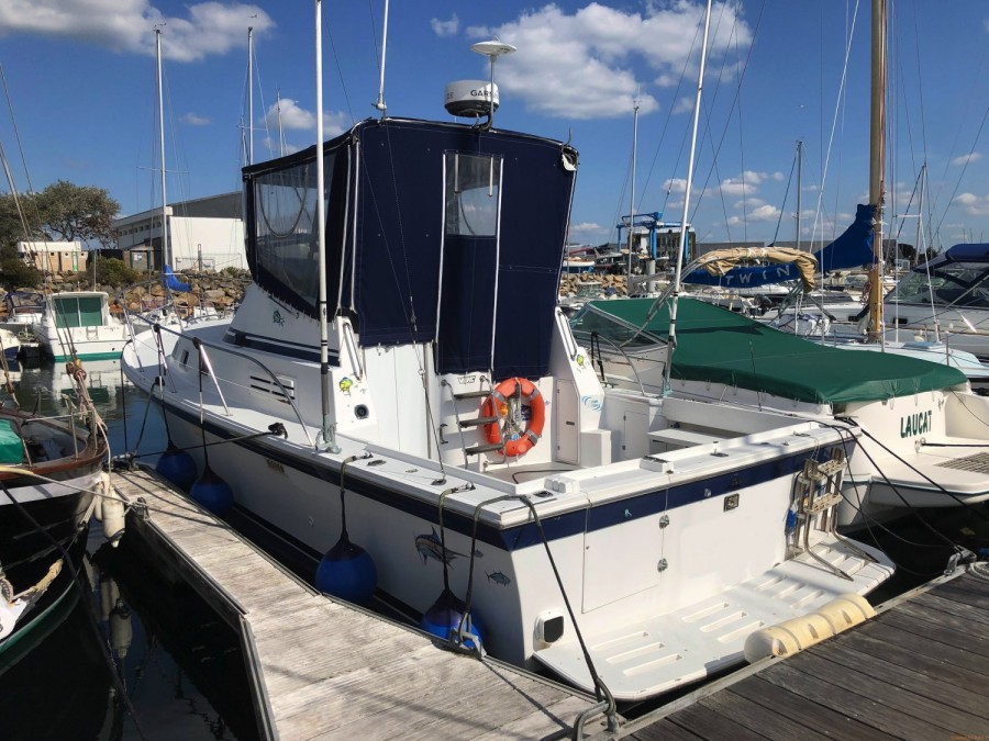 Albin Marine 32 Sport Fisher used
