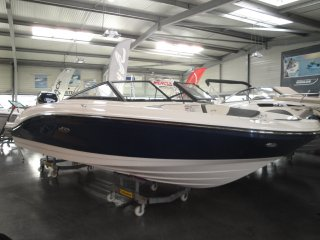 Sea Ray 21 SPX OB neu