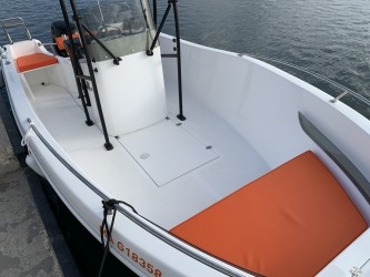 Aquabat Aquafish 550 � vendre - Photo 9