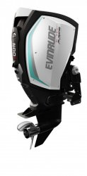 Evinrude E-TEC G2 E200 H.O � vendre - Photo 5