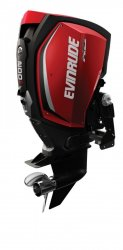 Evinrude E-TEC G2 E200 H.O � vendre - Photo 3