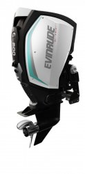Evinrude E-TEC G2 E300 � vendre - Photo 5