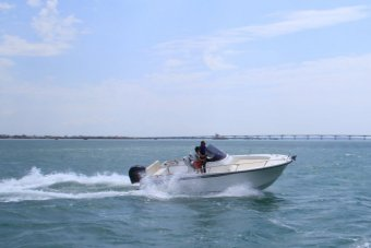 Ocqueteau Abaco 800 Open CC � vendre - Photo 1