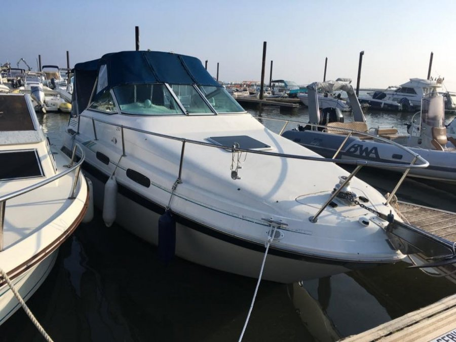 Sea Ray 230 DA occasion