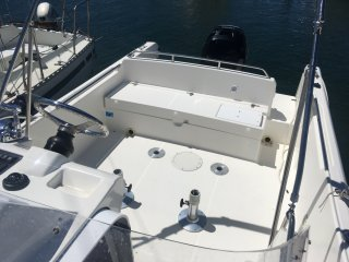 Kelt White Shark 248 � vendre - Photo 5