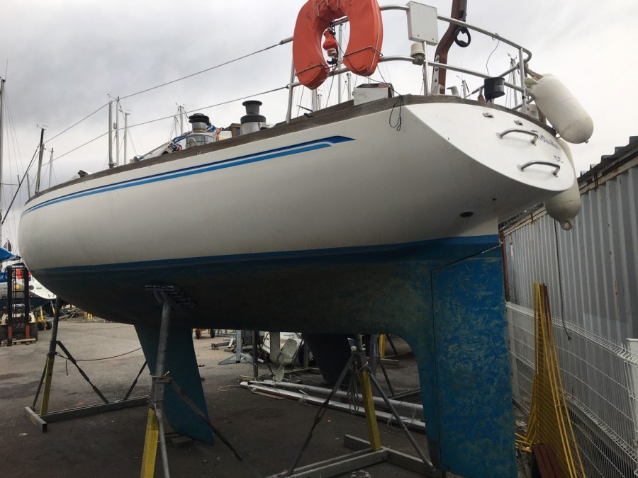 Olympic Carter 37