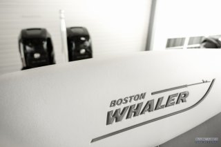 Boston Whaler Boston Whaler 270 Dauntless à vendre - Photo 8