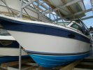 Cruisers Express 250 � vendre - Photo 1
