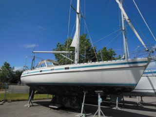 Contest Yachts 36 S occasion
