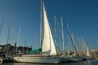 Easy Sailing 10.90 occasion