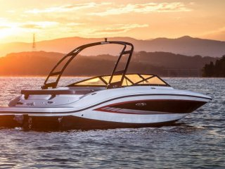 Sea Ray 21 SPX occasion
