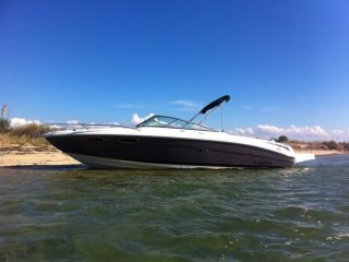 Sea Ray 240 Sunsport Limited occasion
